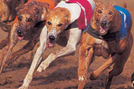 Poole Greyhound Stadium - Entry to the Greyhound Racing with Meal for Two - Save 71%