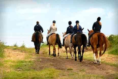 Grange Trekking - Horse Riding Lesson and One hour Trek - Save 60%