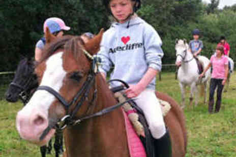 Acrecliffe Equestrian Centre - Full Day Equestrian Experience - Save 52%