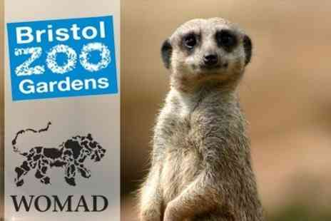 Bristol Zoo - WOMAD Festival Ticket and Return Zoo Entry Ticket for One Adult - Save 48%
