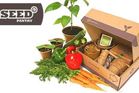 Seed Pantry - Dad And Me Veg Seeds Starter Packs - Save 50%