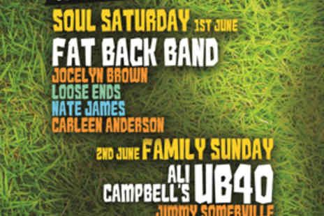 Happy Days Festival - One Full Day Ticket to Happy Days Festival for Soul Saturday on 1 June or Family Sunday on 2 June - Save 13%