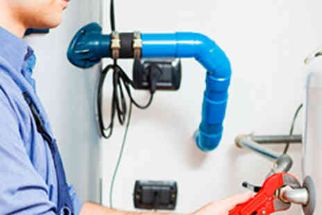 Wilde Heating and Plumbing - Full Boiler or Gas Fire Service Including Flue Combustion Test - Save 68%