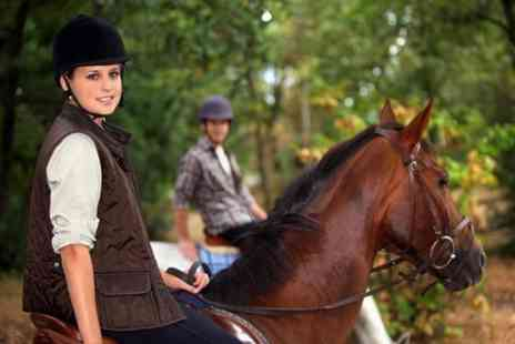 Fordbank Equicentre - Horse Riding For One - Save 63%