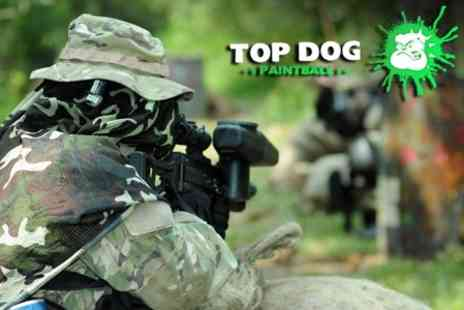 Top Dog Paintball - Paintball For One Plus 100 Rounds and Lunch - Save 50%