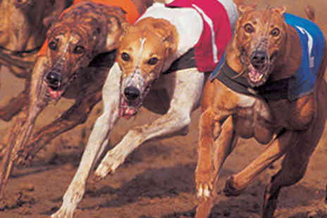Doncaster Greyhound Stadium - Dog Racing with Programme, Chicken Curry, and Beer, Wine, or Spirit and Mixer Each for Four - Save 71%