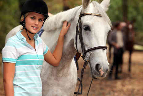 Kailzie Equestrian Centre - One hour horse riding beginners lesson - Save 60%