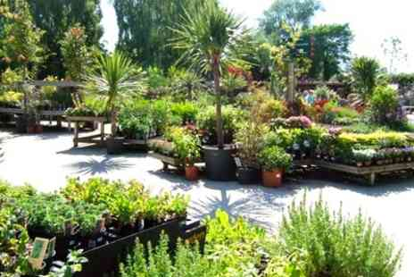 Floralands Garden Village - Voucher to Spend on Plants and Gifts - Save 50%