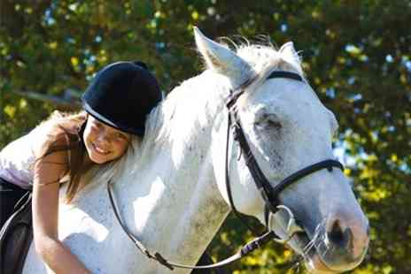 Hooves and Paws - Horse Riding Camp One Day - Save 50%