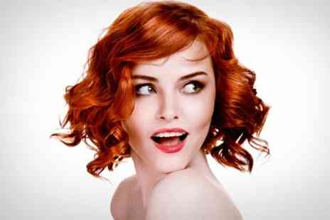Lisa Hair Design - Full Head of Colour With Conditioning Treatment Plus Cut and Blow Dry - Save 51%