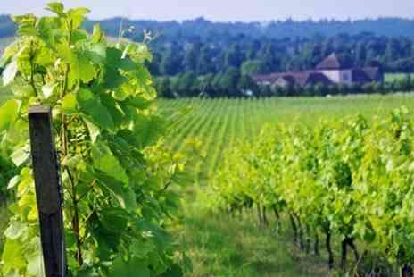 Denbies Wine Estate - Vineyard Tour With Sparkling Wine - Save 53%