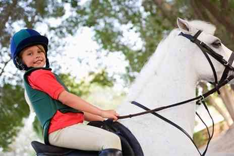 Tick Fen Riding Centre - One Hour Horse Riding Lessons - Save 43%