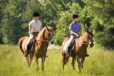 Kailzie Equestrian Centre - Horse Riding Lesson - Save 60%