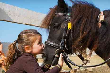Mill Farm Riding School - Children s Pony Day With Rides - Save 65%