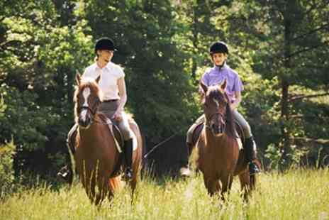fordbank deal 3 - Horse Riding - Save 63%