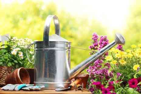 Harlow Wood Garden Centre - Plants Giftware and Garden Sundries - Save 50%