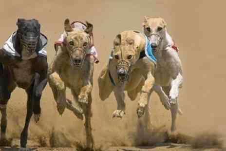 Greyhound - Greyhound Racing For Two With Racecard, Burger and Beer - Save 72%