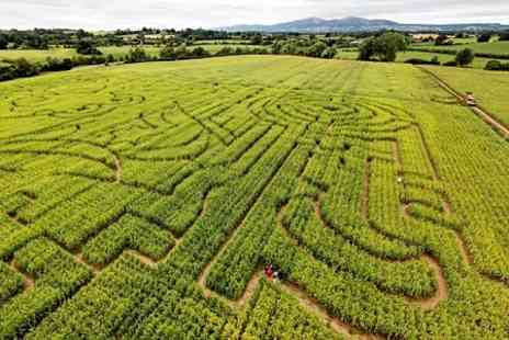 Maize Maze - Family Maze Entry - Save 61%