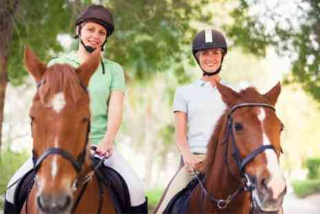 Edinburgh & Lasswade Riding Centre - Lesson For One Beginner - Save 63%
