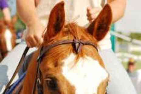 Gellings Riding School - One Hour Group Horse Riding Lesson - Save 53%