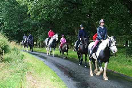 Meadowhead Farm - Horseback Trek For One - Save 50%