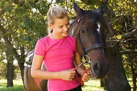 Bridleways Equestrian Centre - Childrens Pony and Stable Management Class - Save 58%