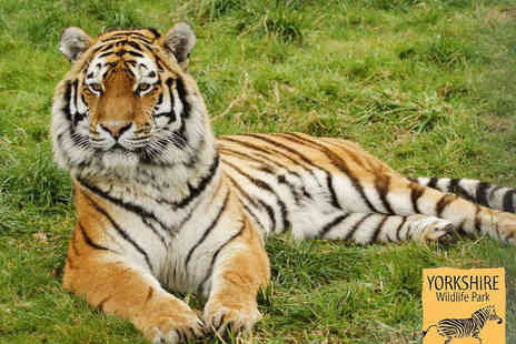Yorkshire Wildlife Park - Day Park Entry Admission and Safari Night Experience for Two Adults - Save 52%