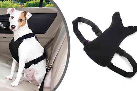UKCJS - Safe whilst driving with this Pet Car Harness  - Save 80%