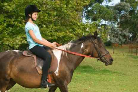 Halsall Riding - Horse Riding 90 Minute Hack For One - Save 28%