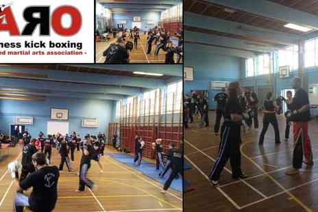 ARO Fitness Kick Boxing - 6 Weeks of Beginners Kickboxing Reading - Save 51%