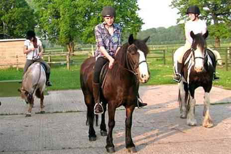 Middle Harling Riding School - One Hour Hack Plus Riding Assessment - Save 34%