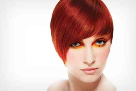 Salon 2 - Full Highlights or Colour Plus Cut and Blow Dry - Save 65%