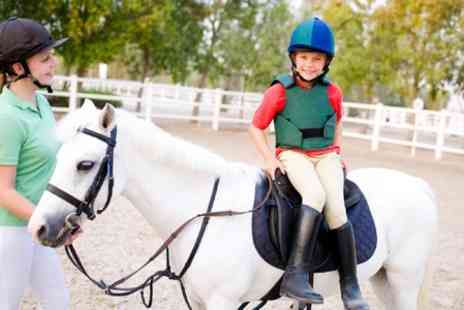 Hooves and Paws - One Day Horse Riding Camp - Save 51%