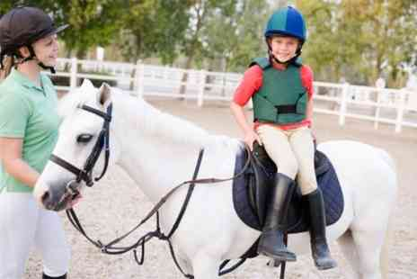 Holly Equestrian Centre - Pony Day With Grooming and Riding For One - Save 49%