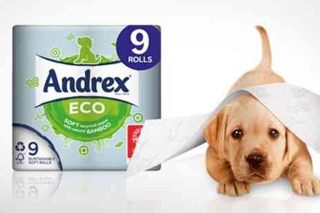 ebeez.co.uk - 45 Pack of Andrex Eco Recycled Toilet Tissue - Save 34%