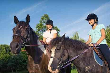 Halsall Riding - Two 60 Minute Horse Riding Lessons - Save 32%