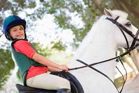 Sweetlands Riding School - Childs Horse Riding Lesson - Save 64%