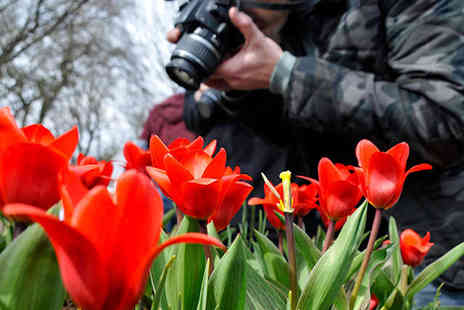 Steven Allan Images - One Day Digital SLR Photography Course - Save 67%