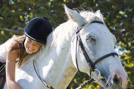 Lee Hill Riding School - Half Day Horse Riding Camp Experience - Save 51%