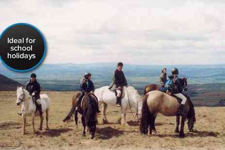 Grange Trekking - One hour horse riding lesson followed by a one hour trek for two people - Save 59%