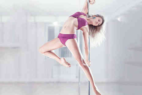 Zigs Exercise - Eight Beginners Pole Dancing Yoga or Pilates Classes - Save 61%