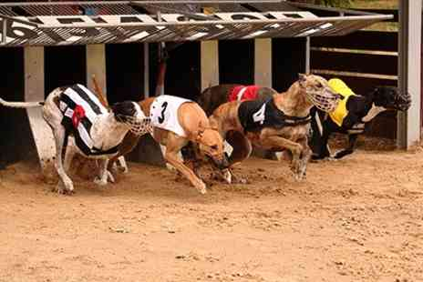 Harlow Greyhound Stadium - Greyhound Race Nights for Two With Meal and Drinks - Save 50%