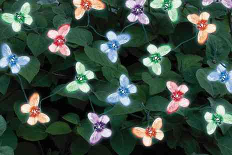 Edco - Solar Led Butterfly Lights - Save 50%