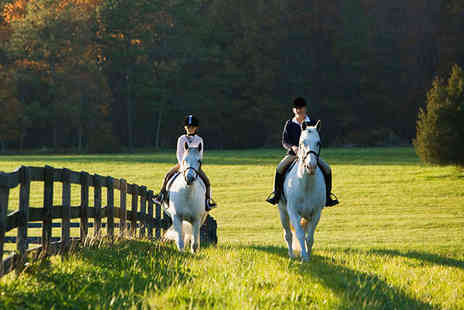 Hooves and Paws - Two 30 Minute Horse Riding Lessons for One - Save 56%