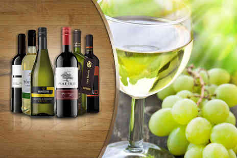 Oakbridge - Case of 6 premium wines in red, white or mixed - Save 56%