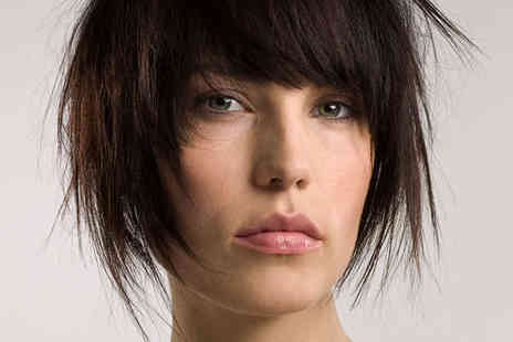 Fruition Salon - Wash Haircut Blow Dry and Deep Conditioning Treatment - Save 75%