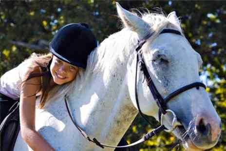 Matchmoor Riding Centre - Private Horse Riding Lesson Plus Moorland Trek For One - Save 51%
