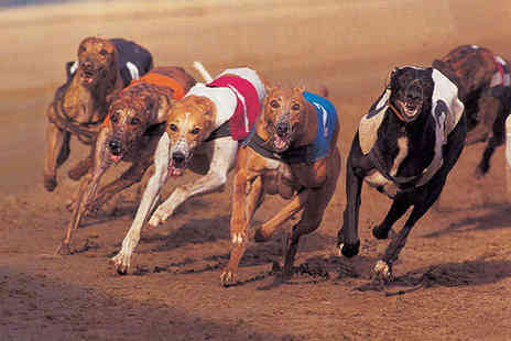 Swindon Greyhounds - Entry to Greyhound Racing for Two - Save 63%