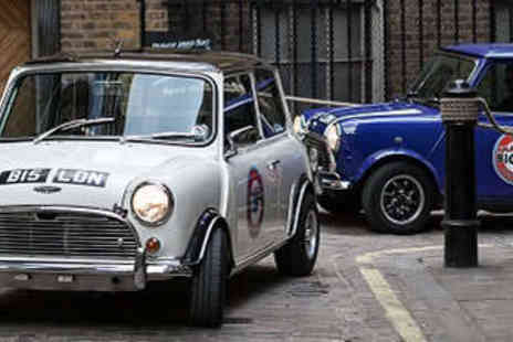 Small Car Big City - Choice of London Tour in a Chauffeur Driven Mini Cooper - Save 20%