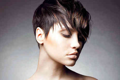 Elizabeth Black Hair - Haircut and Blow Dry - Save 52%